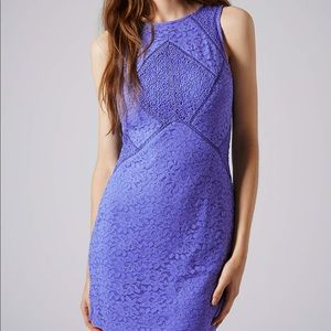 Topshop Blue Mixed Lace Bodycon